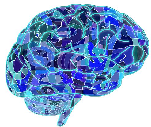 EIP, EIP et Dys : activité cérébrale des Enfants à Haut Potentiel